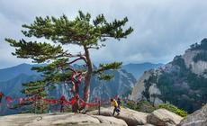 Hua Shan - Szczyt Wschodni